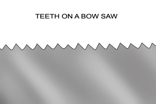 Teeth on a Bow saw