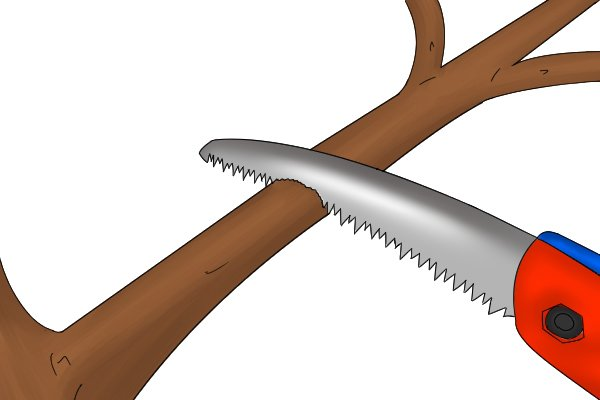 cutting a larger branch from above.