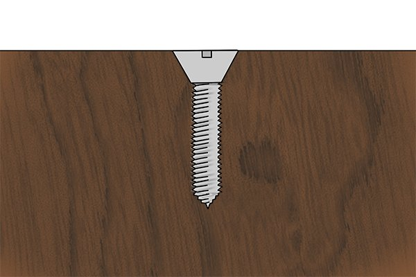 A wood screw in a piece of timber