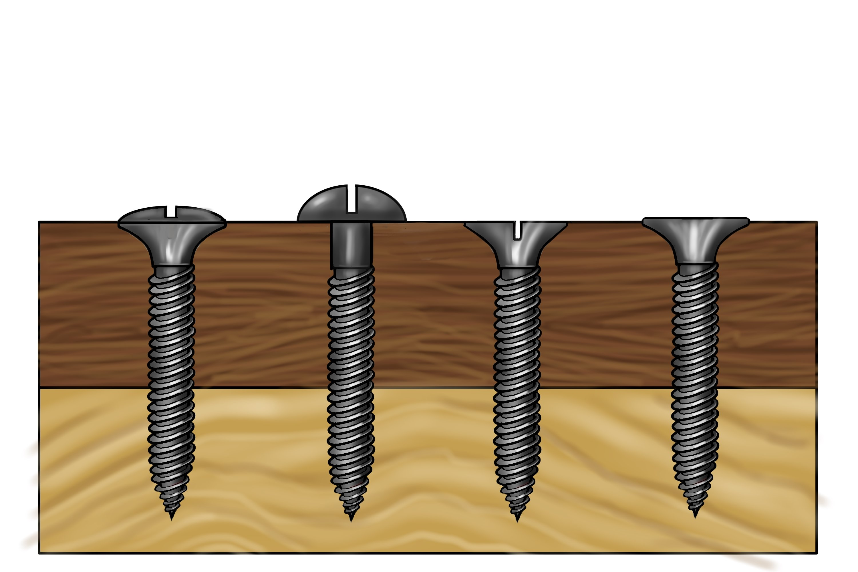 A raised head screw and a domed head screw no sitting flush and a countersunk head screw and a bugle head screw sitting flush on a piece of material