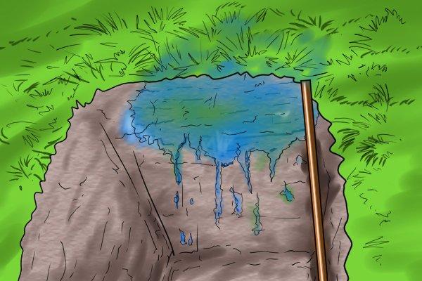 blue dye in soil
