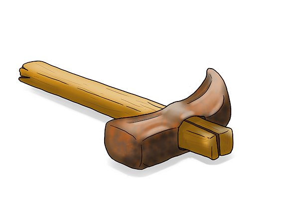 Did you know the word maul derives from the latin word malleus meaning hammer