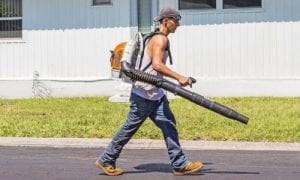 Best Leaf Blowers of 2020