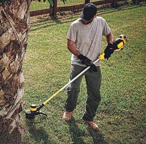 Strimming with Dewalt grass trimmer.