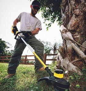 Using Dewalt grass trimmer.