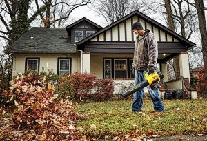 Using Dewalt leaf blower to clear area.
